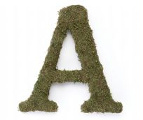 "Large 15"" Moss Monogram - Letter A"